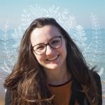 Sandra M. - Illustrateur et designer