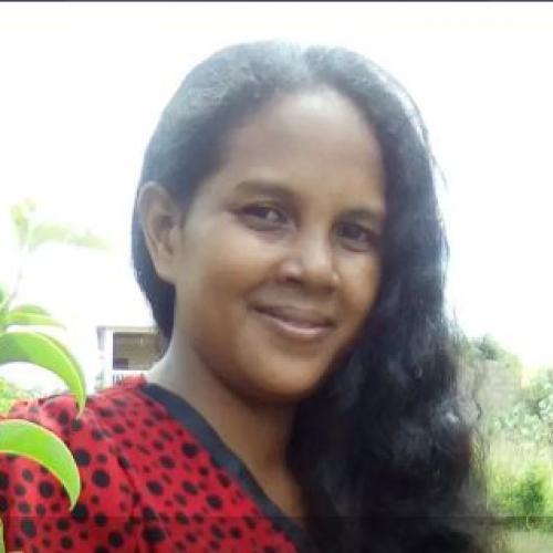 Rina R. - Développeurs