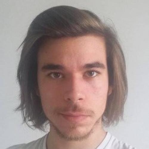 Nicolas L. - Graphique / Illustrateur
